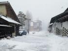 雪なんですサムネイル